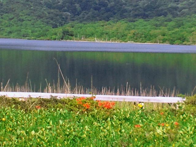 雄国沼2012